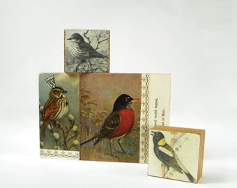 Collage Art Blocks, Antique Birds, Hand Made OOAK Art Blocks