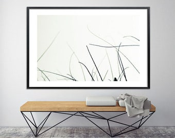 Large NATURE PRINT, Giclee Print up to 40X60, huge wall decor, tree print, home decor, minimalist poster, black and white