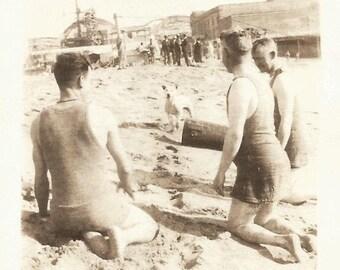 "Vintage Snapshot ""Lost Dog"" Jack Russell Terrier Pit Bull Puppy Beach Found Vernacular Photo"