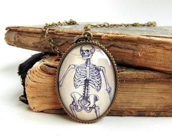 Anatomical Skeleton Necklace - Anatomy Jewelry - Human Skeletal System