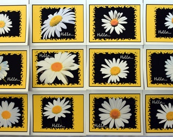 Burst of Daisy Smiling at You - Notecards