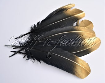 Gold Tip Dipped black feathers, painted long turkey wing feathers quill for millinery, wedding party decor / 10-14 in (25-35cm) long / F182G