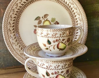 Johnson Brothers Fruit Sampler Cup and Saucer, Hand Engraved Staffordshire Old Granite, 1970s