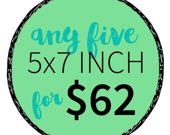 Any five 5x7 Inch Prints for 62 dollars- Multiple Print Discount. Order more prints save more money.