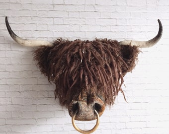 Angus Faux Taxidermy Highland Coo| faux taxidermy | wall art |wall decor | hairy cow | highland coo | scottish | wall mounted head | bull