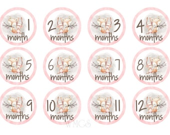 Baby Month Stickers Monthly Stickers Girl Baby Monthly Stickers Milestone Stickers Gift Tribal Woodland Animals Forest
