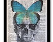 Dictioanry Prints, Skeleton Art, Skull Print, Anatomical Art, Anatomical Skull, Skull With Butterfly,Teal Color Art, 8x10 Dictioanry Art