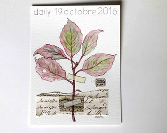 daily 19 octobre   2016