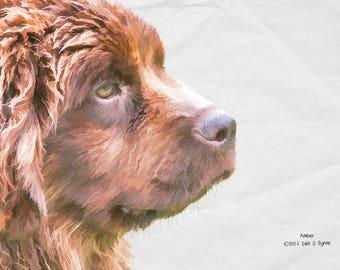Newfoundland dog print, dog art prints, dog lover gift, dog wall art, dog picture, dog photography, prints of dogs, home décor art