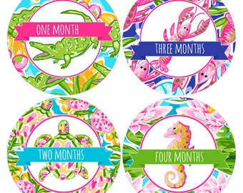 Set of 12 Round Monthly Stickers with Tropical Designs for Baby Girls Photo Props Keepsakes - CDBSMos002