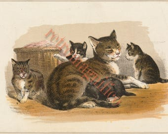 Cute Victorian Cat and kittens image from 1800's digital download art print, for framing, collage, mixed media, altered art,