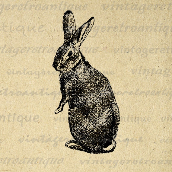 Rabbit Digital Image Rabbit Graphic Cute Animal Bunny Printable Easter Spring Nursery Download Antique Clip Art Jpg Png Eps HQ 300dpi No.334