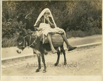 Tunis old man on donkey antique photo Africa