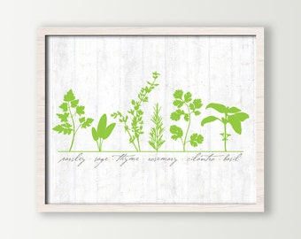 Cottage Chic Decor / Chef Kitchen Wall Art Print with Cooking Herbs Parsley, Sage, Thyme, Rosemary, Cilantro and Basil