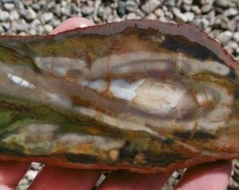 Oregon Agate Slab (100X45X8)