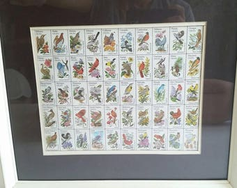 1982 United States Post Office Birds and Flowers of the Fifty States Framed