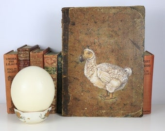 Dodo Painted on Antique Book Cover - Beautiful Piece