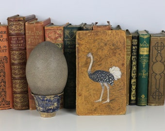 Emu Bird Painted on Antique Book Cover - Beautiful Piece