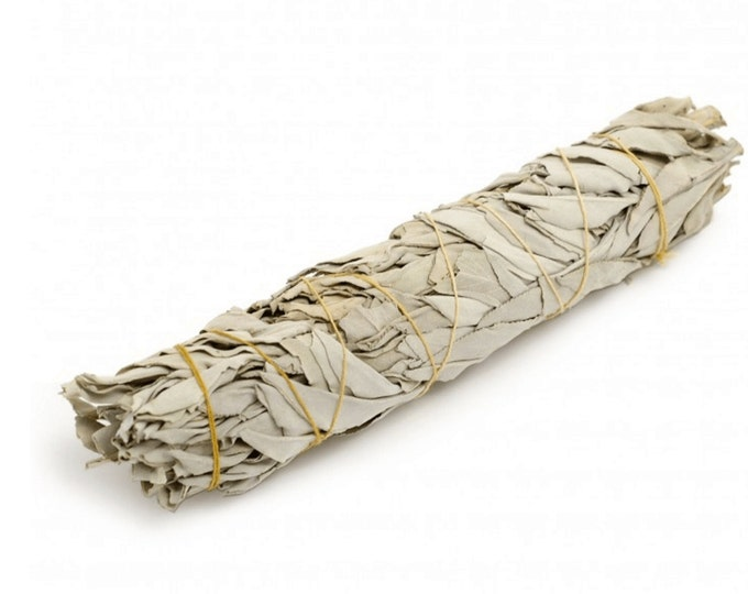 White Sage Stick (Californian) - Large 8 inch (Premium Quality)