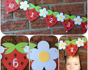 1st Birthday photo banner - Strawberry banner - Photo banner - NB -12 month pictures  -  First year milestones -  first year photo banner
