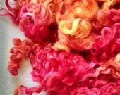 Teeswater Locks - Curls - Hand Dyed Locks - Doll Hair - Spinning - Lockspinning - Felting - Wool Locks - Troll Hair - Local Wool - Blythe