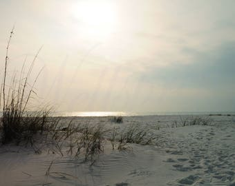 Coastal Sunset on the Gulf of Mexico photography, Seaoats on  the Shore photo, Muted Color Sunset Beach picture