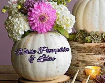 White Pumpkin & Lilac Candle/Bath/Body Fragrance Oil