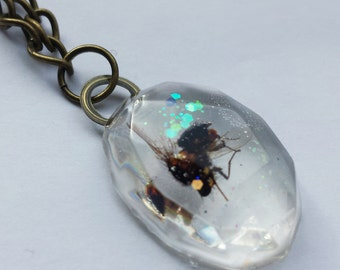 Fly Necklace, Insect Jewellery, Resin Jewellery, Housefly Pendent, Cruelty Free Taxidermy