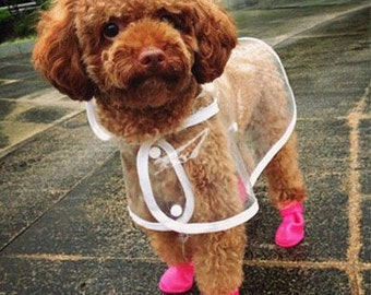 Cute dog raincoat