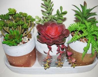 Faux Succulent Planter, Concrete Succulent Planter, Indoor Garden, Modern Arrangement, Succulent Garden, Copper, Silver Gold, Succulent Gift