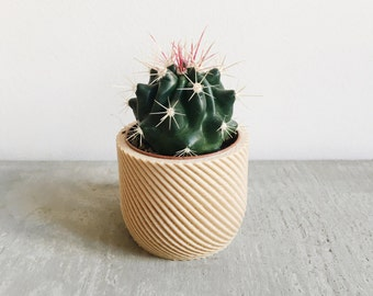 Minimalist Wood Planter for your succulents or cacti / Made in France