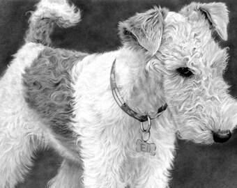 dog custom portrait, colored portrait, portrait from photo, custom dog drawing, custom portrait, personalized portrait, portrait drawing