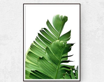 Banana Leaf Print - Botanical Wall Decor - Plant Poster - Palm Leaf Printable Wall Art - Scandinavian Home Decor - Minimalist Poster.
