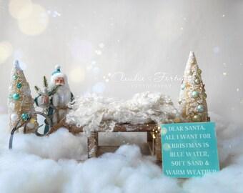 Newborn Digital Backdrop, Christmas Digital Backdrop , DIGITAL BACKDROP/BACKGROUND