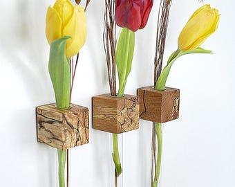Window vase beech increased flower vase