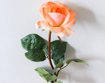 Orange Peach Rose Stem ( Real Feel)