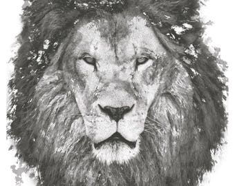 Lion Poster 30x42cm (11x16 inches)