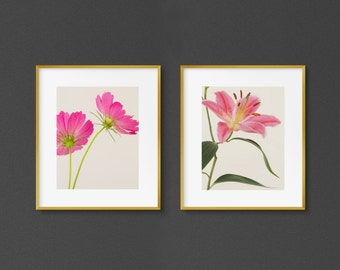 "Set of 2 Pink Flower Art Prints, Botanical Print Set, Floral Wall Art, Nature, Fine Art Photography, Pastel Decor ""Lily and Cosmos"""