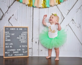 First Birthday Outfit Girl, Tutu Dress Set, Tulle Skirt Set, Baby Romper, Baby Headband Hat, 1st Birthday Outfit Girl, Baby Girl Birthday