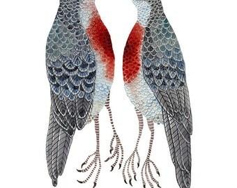 Love Struck Print, luzon bleeding heart doves, giclee art print, bird art, watercolor reproduction