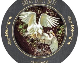 Fine Art Shore Birds #2 Coasters Set of 4