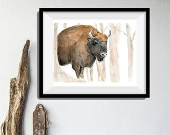 Bison art print, art print Bison in the woods, Bison watercolor painting, animal art, wild life art, southwest, woodland print, animal art