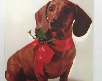 Holiday Dog - vintage color photo illustration dacshund dog with red ribbon and holly 1950's ephemera