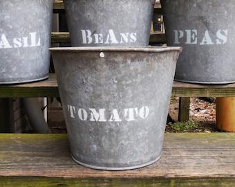 Vintage metal Bucket TOMATO planting  galvanized pails Rustic Barn Garden plant bucket Planters Storage Industrial Cottage