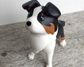 Tricolor Collie Pupper 2