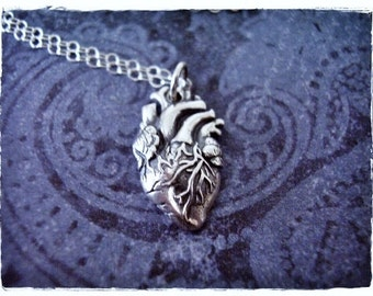 Silver Anatomical Heart Necklace - Sterling Silver Anatomical Heart Charm on a Delicate Sterling Silver Cable Chain or Charm Only