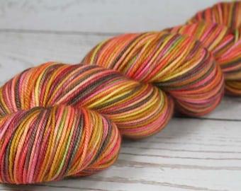 UKELELES Superwash Merino/Nylon Hand-dyed Variegated Sport weight yarn