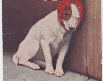 Vintage Imperial Russia Postcard, Puppy - 1916, Richard Publ., Condition 8/10
