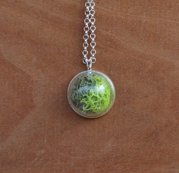 Terrarium Necklace, Moss Mixed Necklace, Moss Necklace, Moss Specimen, Mini Moss Necklace, Green Thumb Gifts, Plant Necklace, Canadian Shop