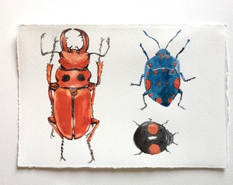 Red Beetle and Bugs Watercolour painting original, Insect painting, Beetle illustration, Beetle Watercolor, Entomology, Original insect art
